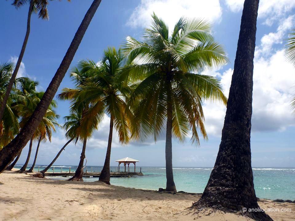 Anoli Location_Plage de la Caravelle_Sainte Anne_Guadeloupe