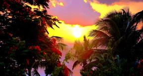 Anoli Location_Coucher de soleil Basse T