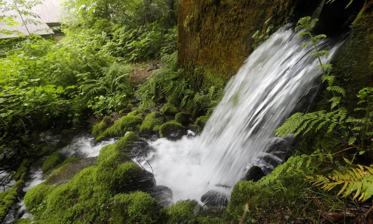 mountain spring water.jpg
