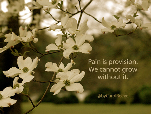 Pain as provision