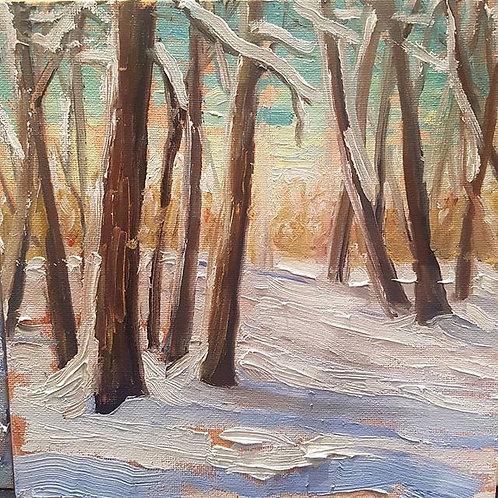 Winter Walk in the Woods 2
