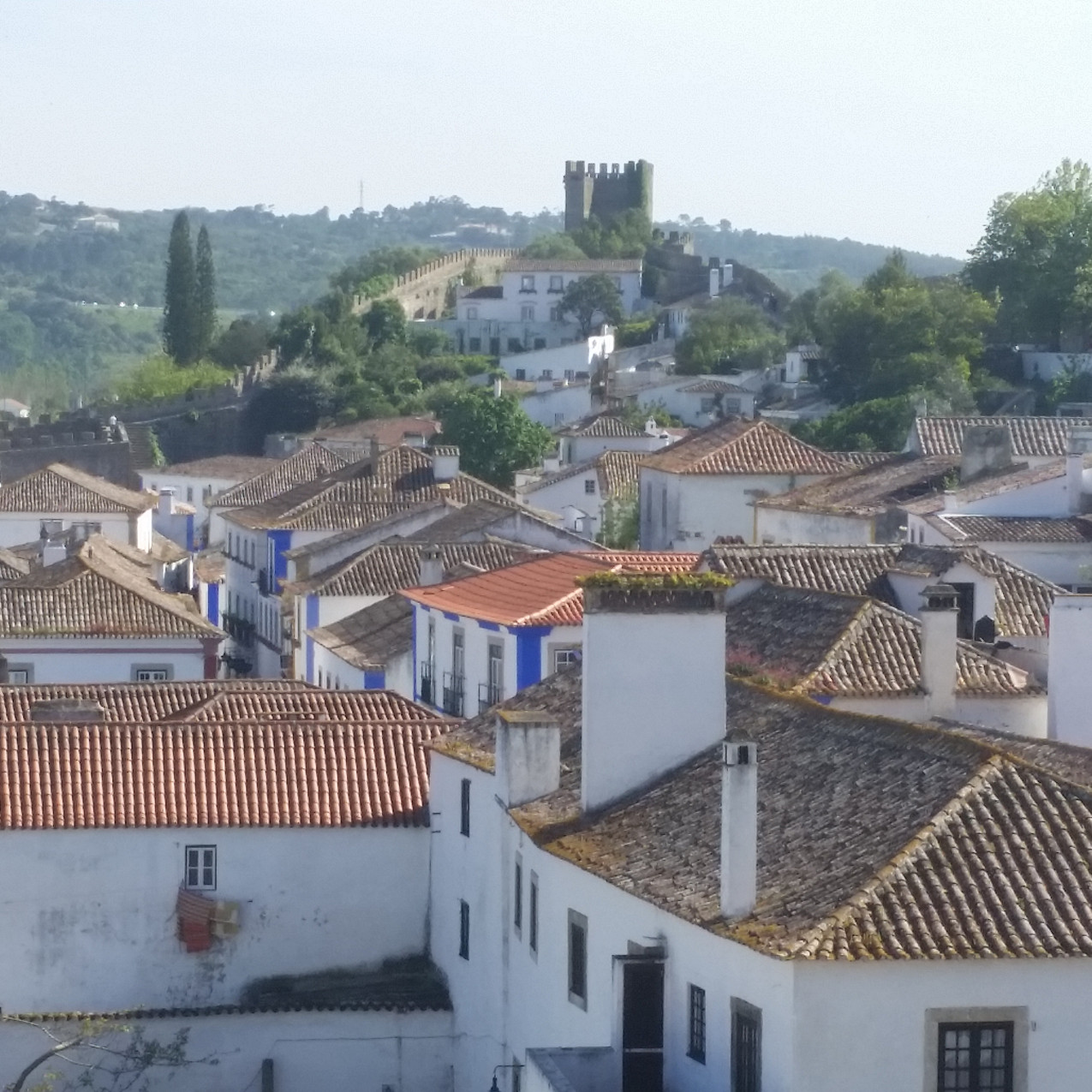 View of Obidos Rooftops