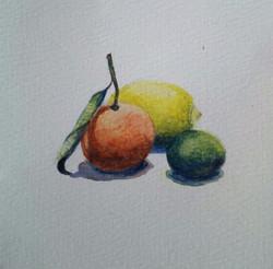 Lemon, Mandarin and Lime