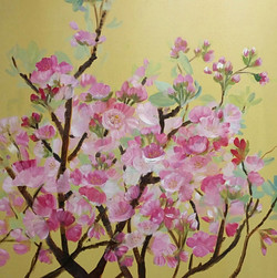 Cherry Blossoms on Yellow