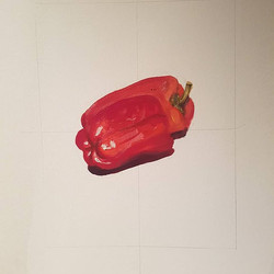 Painted pepper study #21!