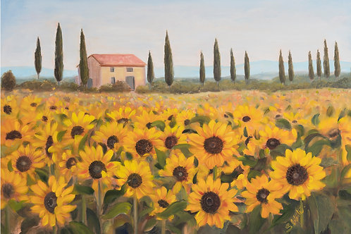 Sunflower Field Tuscan Landscape