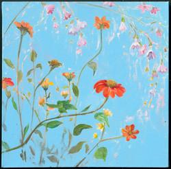 Wildflowers 4