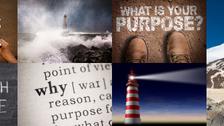 Focus on Purpose