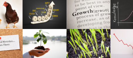 Focus on Growth