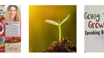 Focus on Seeds