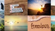 Focus on Freedom
