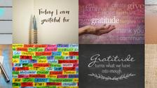 Focus on Gratitude