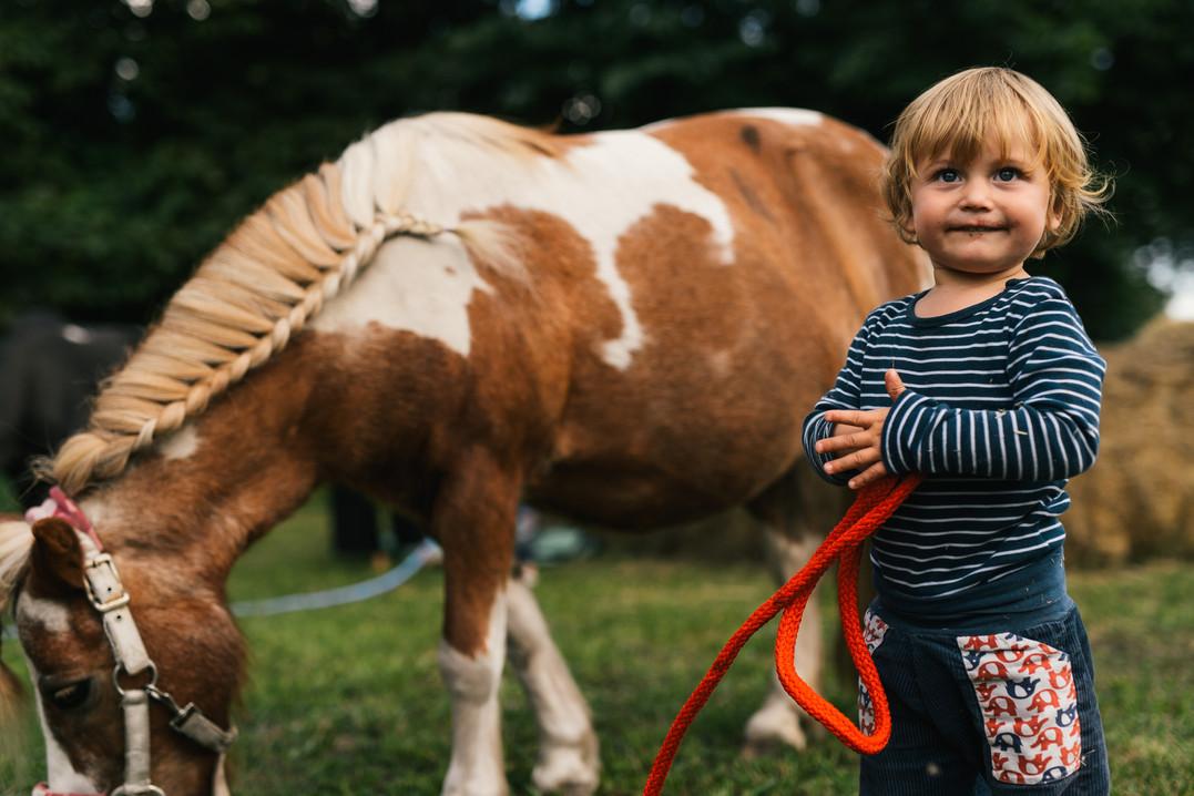 DasLandgut Ponys 3