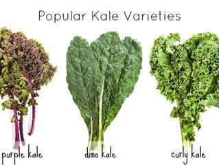 Kale by Comparison