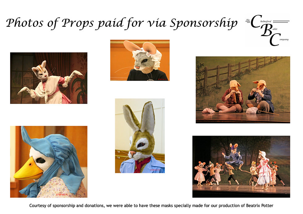 sponsorship page 6 AP 2020 jpeg version.