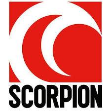 small-scorpion.jpeg