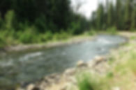 Little Naches River_edited_edited.jpg