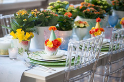 DebiLillyFlower&GardenShow-2_preview