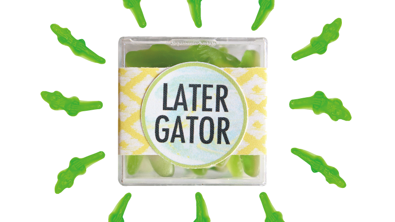 Later Gator Confection Cube