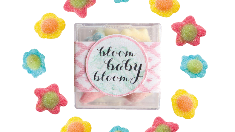 Bloom Baby Bloom Confection Cube