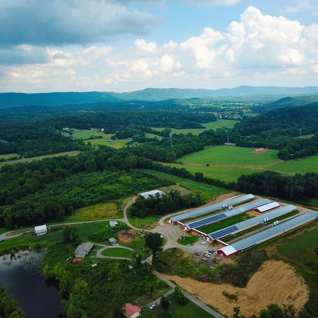 Jones' Poultry Farm 100 kW Solar Array