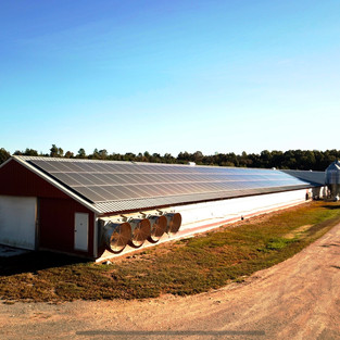 50 kW System at Bruce Family Farm