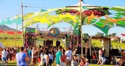 sunflowerfestivalct