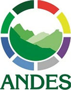 LogoAndes_web.jpg