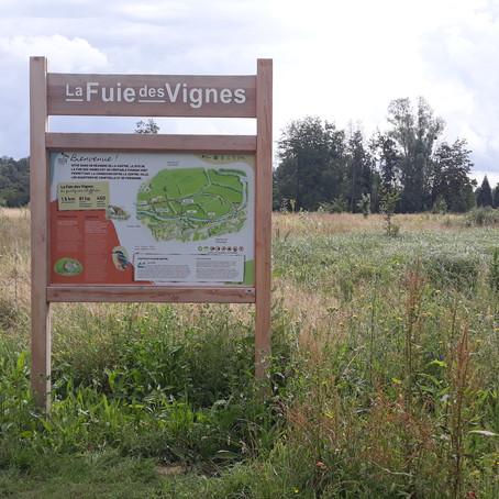 La Fuie des Vignes, le poumon vert d'Alençon