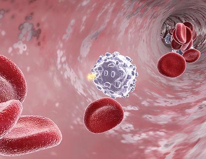 white blood cell scene.jpg