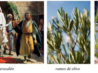 ¿Cómo se celebra en España la Semana Santa?