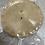 Thumbnail: Frozen Cornish Venison pie