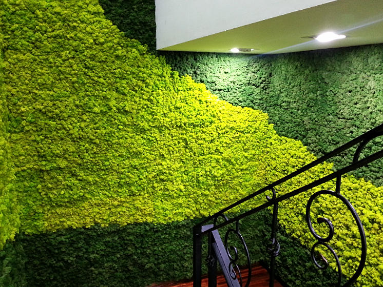 Scandia moss scandia moss scandia inc ltd - Best way to soundproof interior walls ...