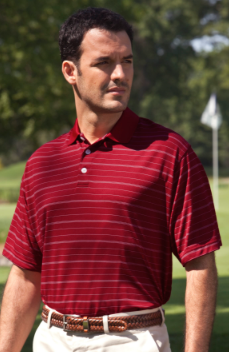 Men's Striped Polo #20294313