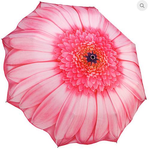 Pink Gerberra