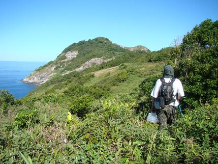 Uma aventura na Ilha da Queimada Grande: a jararaca ilhoa