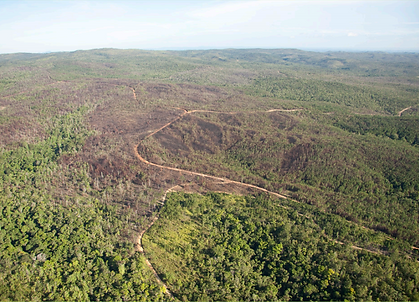 812 - Bull Run - Forest Carbon Offsets L
