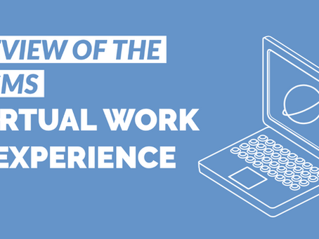 Review of the Brighton and Sussex Virtual Work Experience Platform
