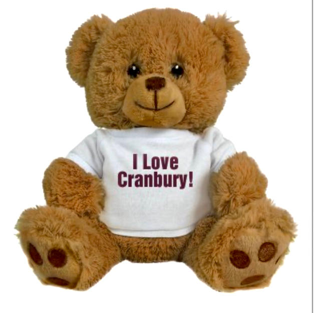 Cranbury Teddy Bear - $20