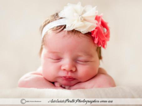 Baby Maya Newborn Shoot – Victoria Berekmeri, Adelaide Birth Photographer
