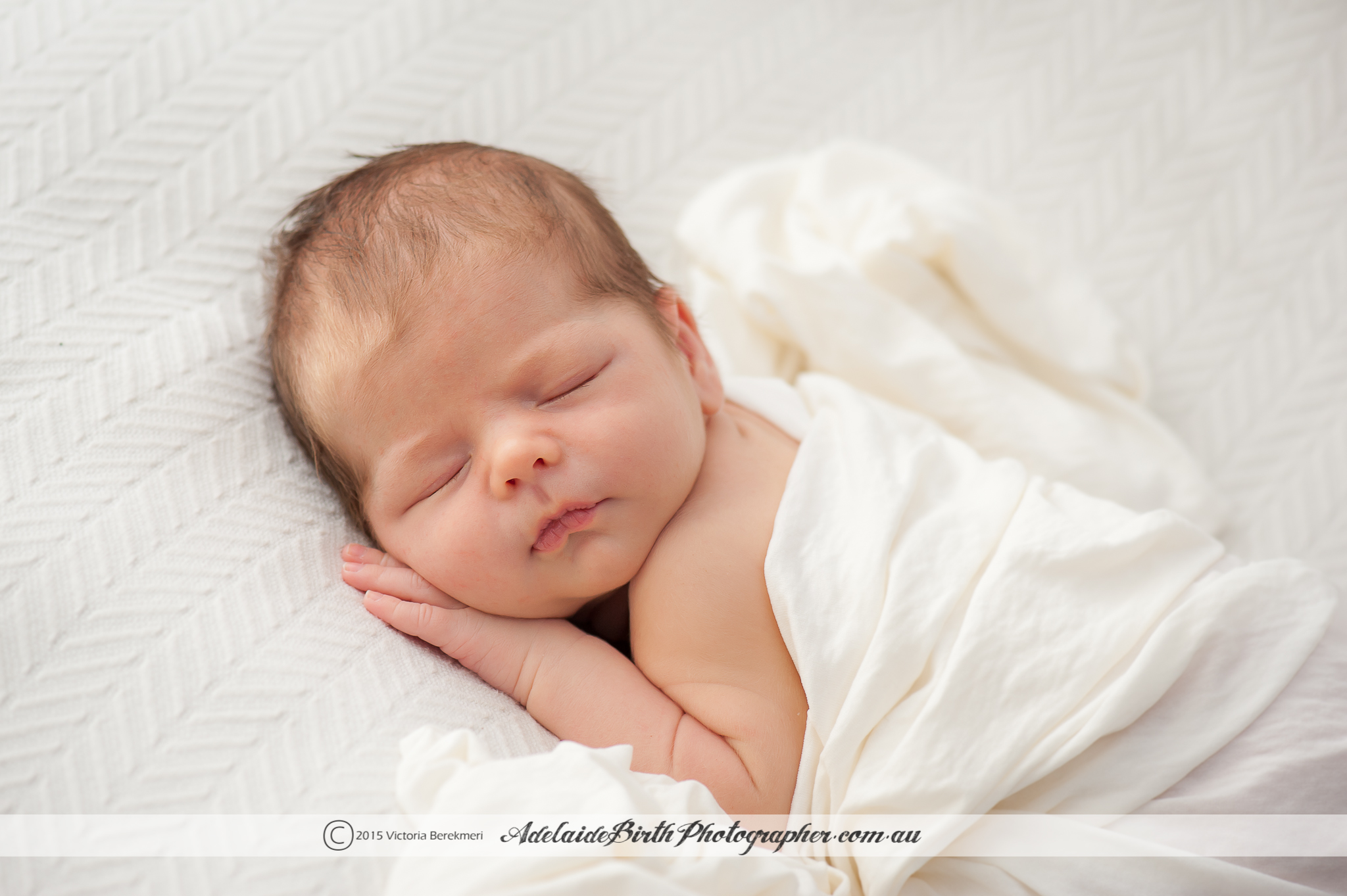 Adelaide Newborn Photographer