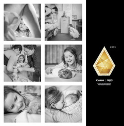 2015 APPA Gold Award