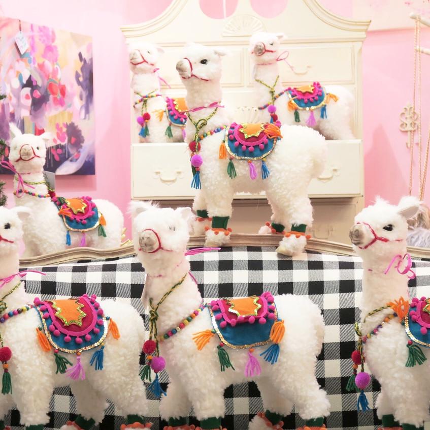 Llamas and more llamas