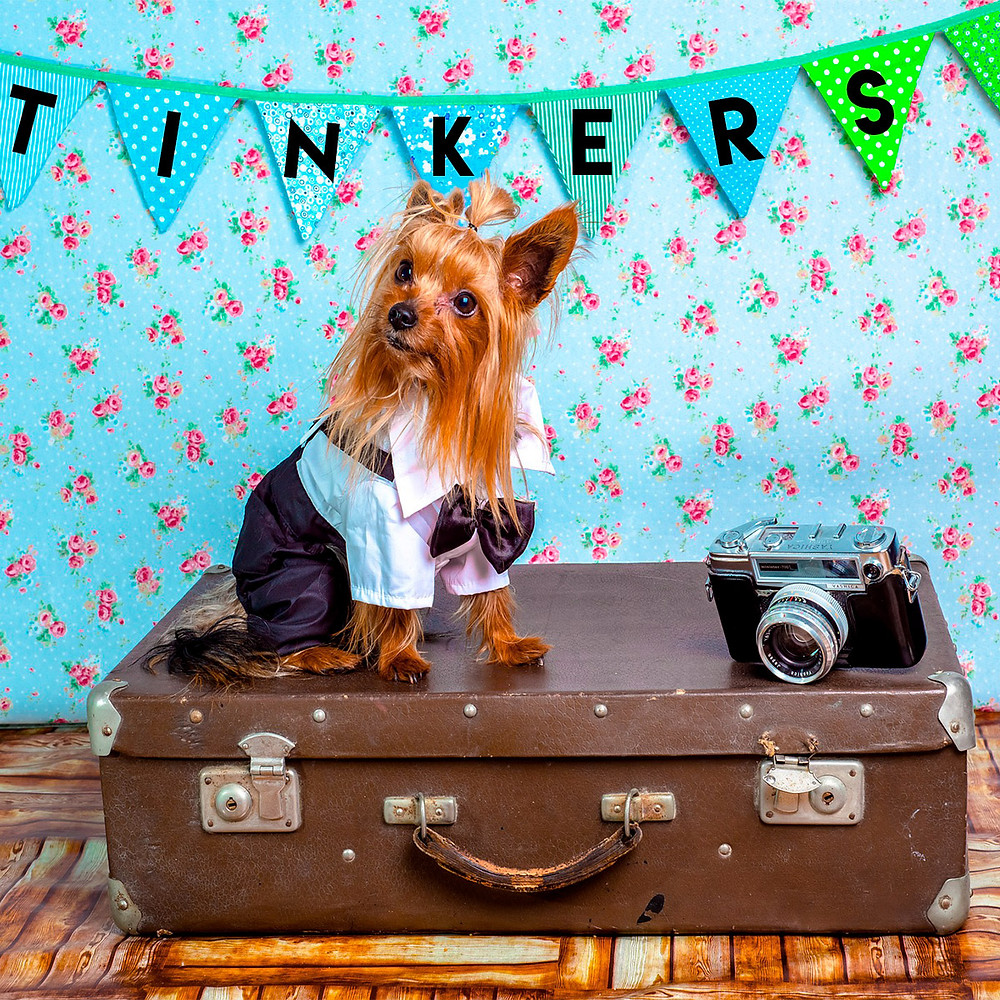 Cute dogs love and Instagrammers love Tinker's