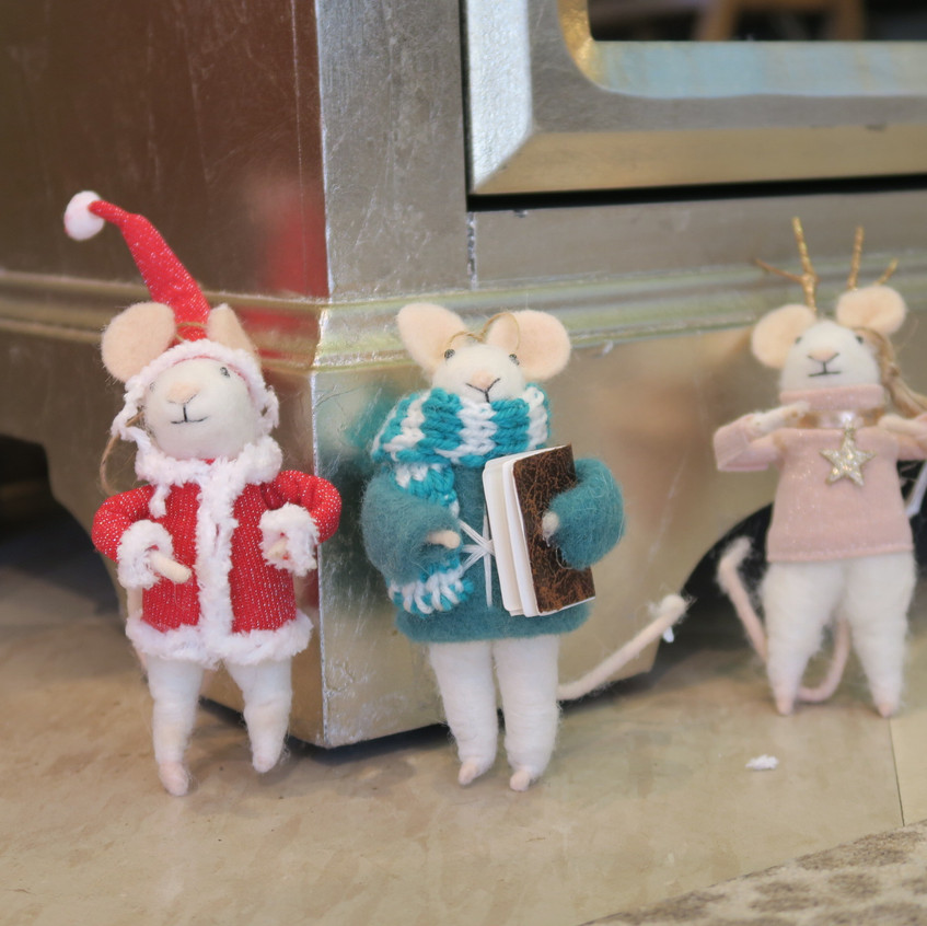 We have mice! yay!