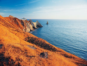cape_kidnappers_new_zealand.jpg