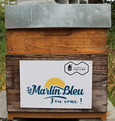 Ruche Marlin Bleu.jpg