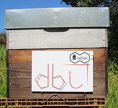 DBI ruche.jpg