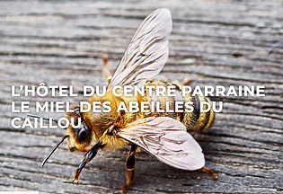 Article Hôtel du Centre.png