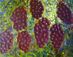 Grapes in Suspension  $175.00
